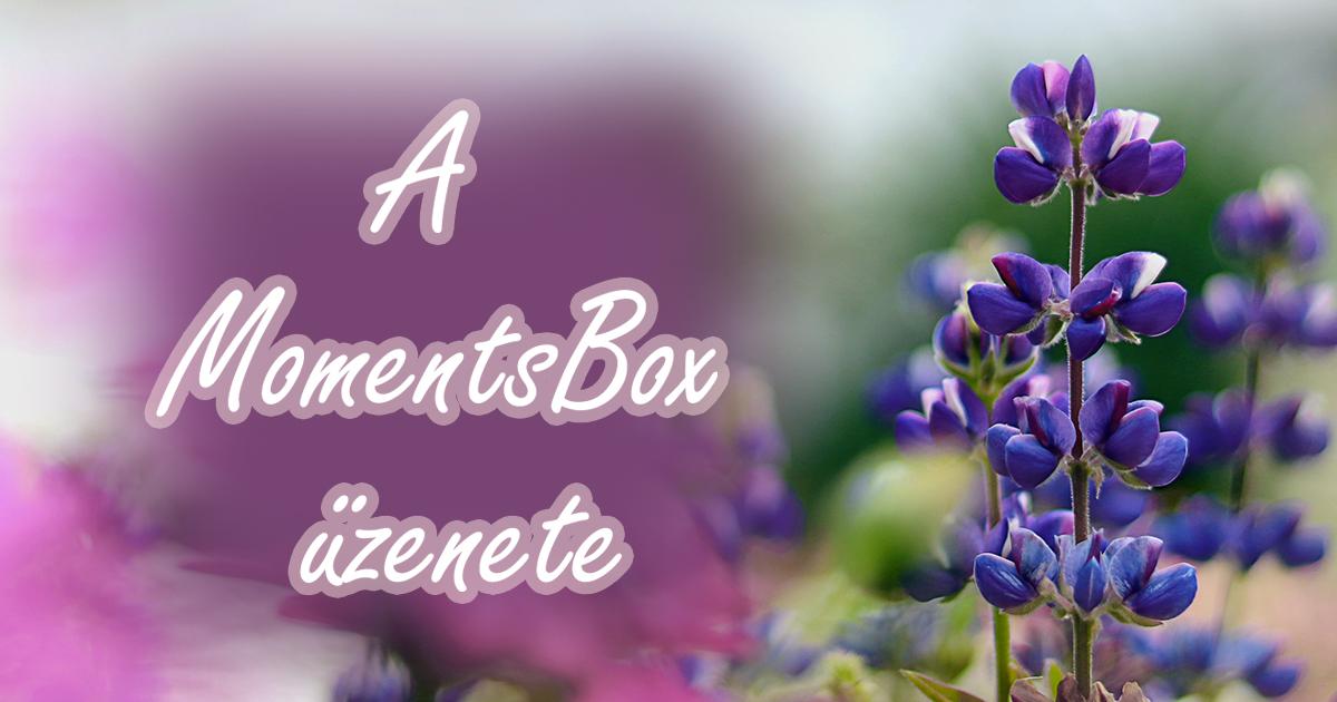 A MomentsBox üzenete